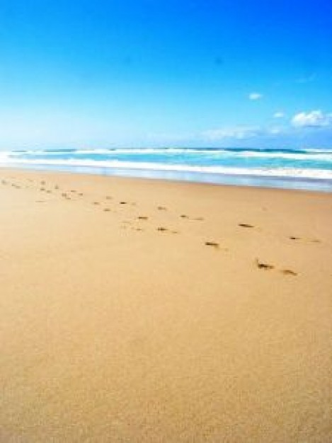 beach-with-footprints-in-the-sand_282003