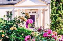 Różana Rezydecja